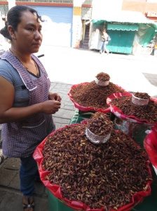 Chapulines - fried grasshoppers.