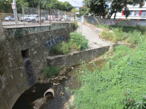 Urban stream in Oaxaca equals dumping grounds? It doesn´t have to be this way...does it?